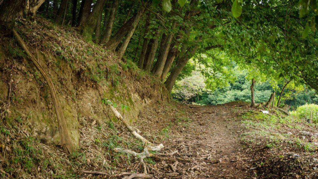 藪塚石切り場跡地の入口